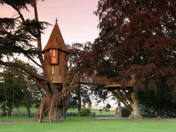 Maisons dans les arbres les cl s de la maison - Cout pour couper un arbre ...