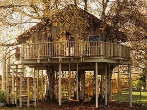 Une maison dans un arbre