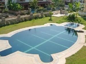piscine tortue