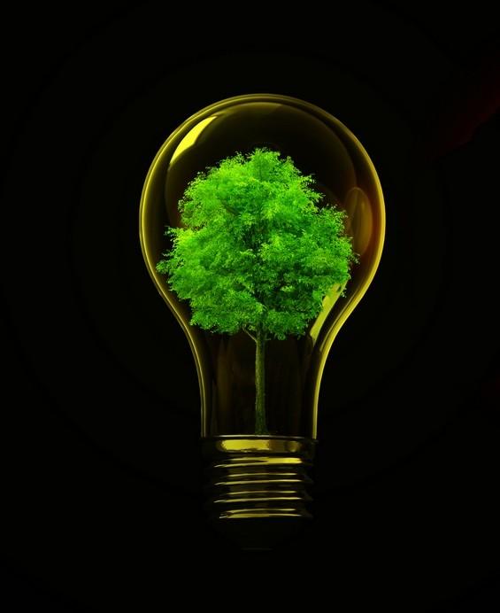 L'actu du jour : 1er comité du plan de rénovation énergétique des logements