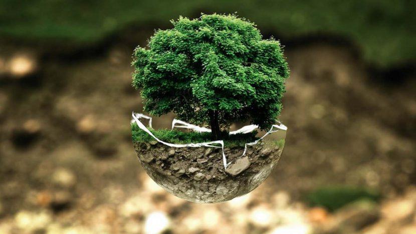 Les solutions écologiques pour isoler responsable