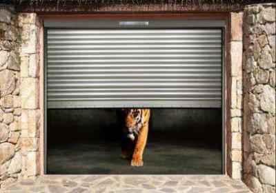 porte de garage: tigre sortant d'un garage