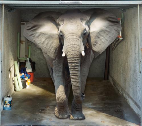 sticker porte de garage: un éléphant dans un garage