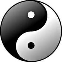 taijitsu du yin-yang