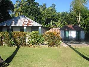 Arbres d'ombrage faisant de l'ombre à des maisons