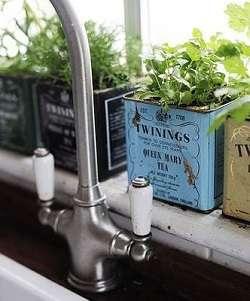 boites thé herbes aromatiques