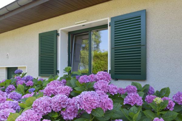 Aide et crédit d'impôt sur les remplacements des fenêtres