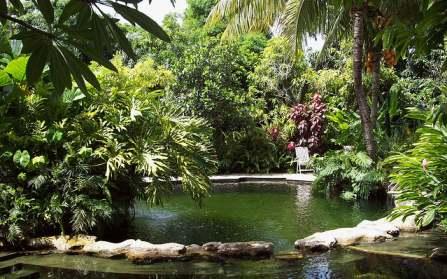 Tendance déco jardin : la piscine biologique
