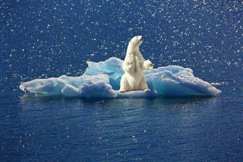 Climobs : le réchauffement climatique en graphique